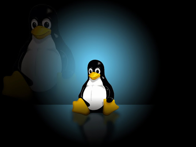 Top 6 Linux Distributions 2013 Must To Try Out