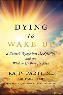 Dying to Wake Up PDF