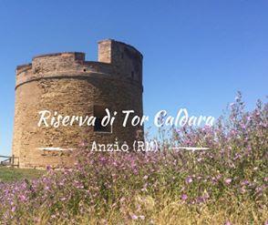 Riserva Tor Caldara Anzio