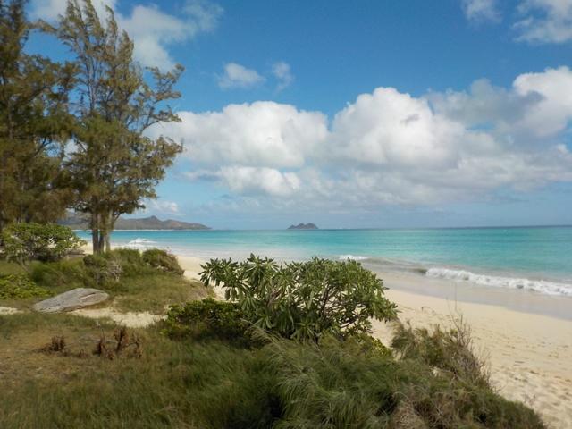 Plage de sable blanc à Oahu