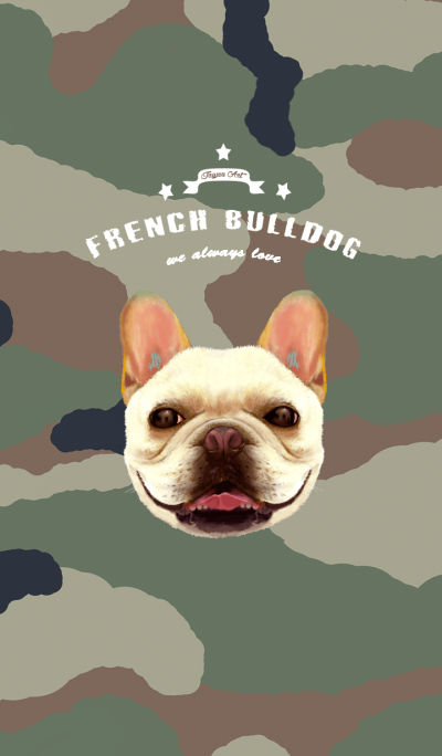 french bulldog coming-camo style