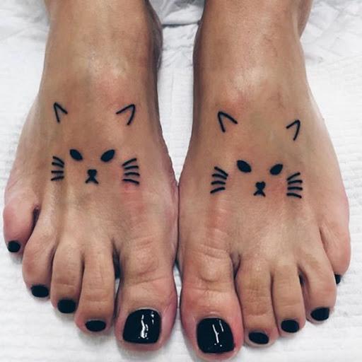 Estes simpáticos gatinhos
