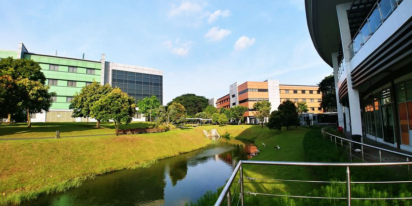 Buildings at UP Ayala Technohub