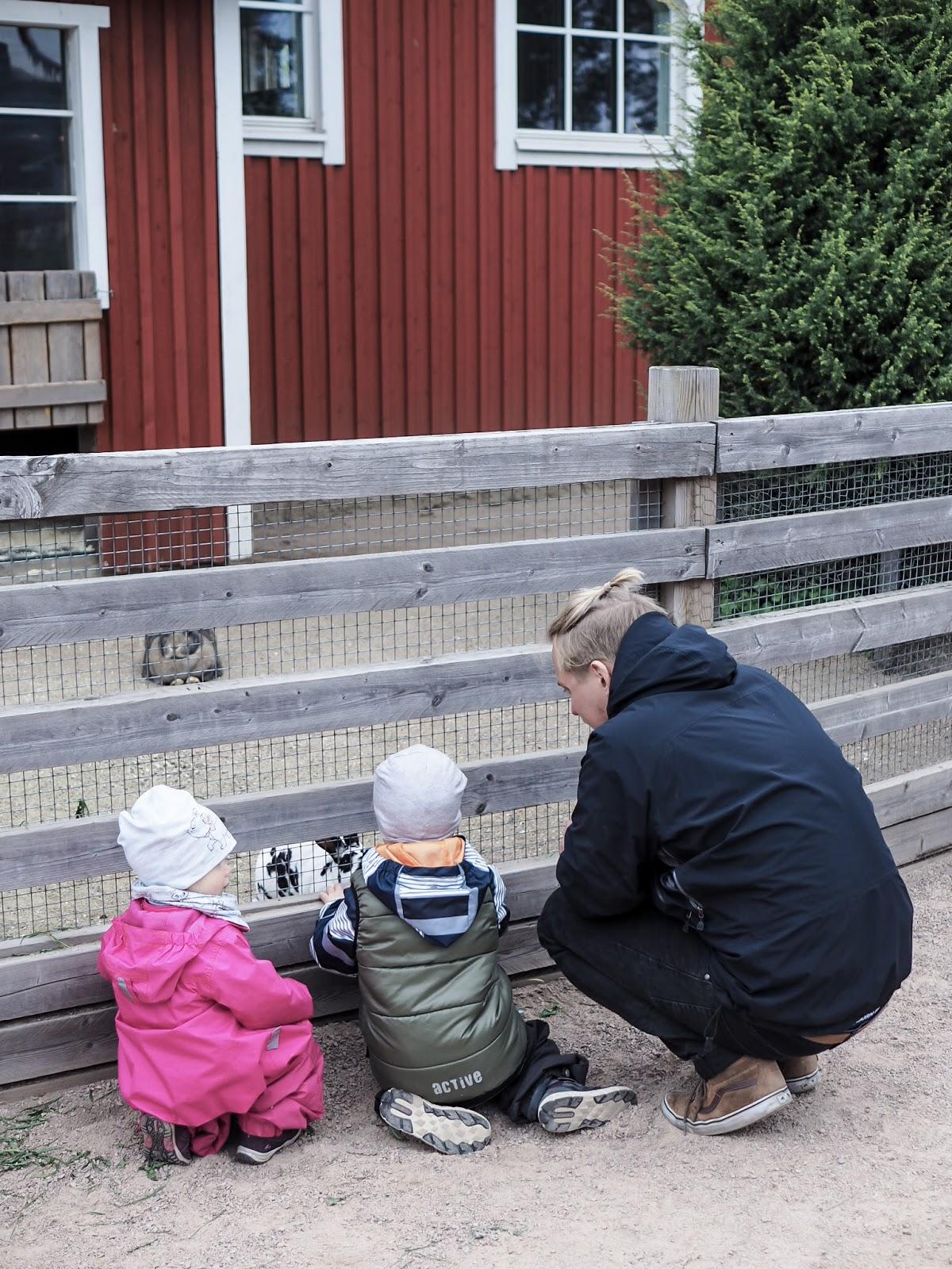 Koiramäki Särkänniemi Tampere on mahtava retkikohde lapsiperheille Tampereella