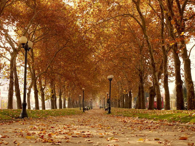 Outono em Santiago