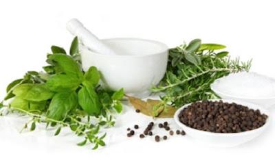 5 Tanaman Obat Herbal Alami Yang Harus Anda Ketahui