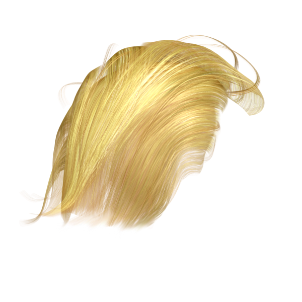 Get something Trumped with 99% accurate Trump Hair - Dedipic