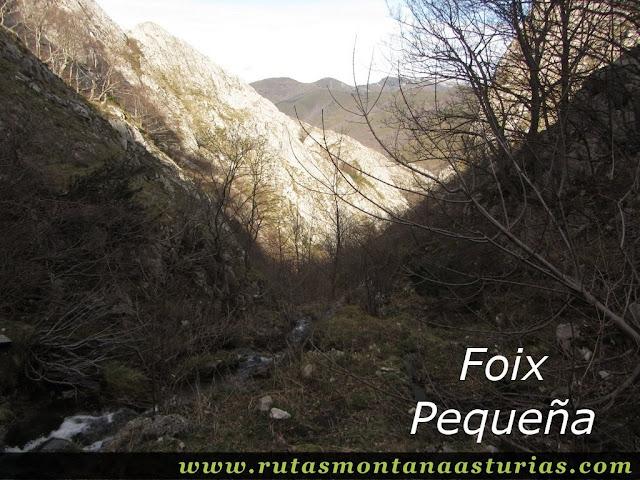 Foix Pequeña