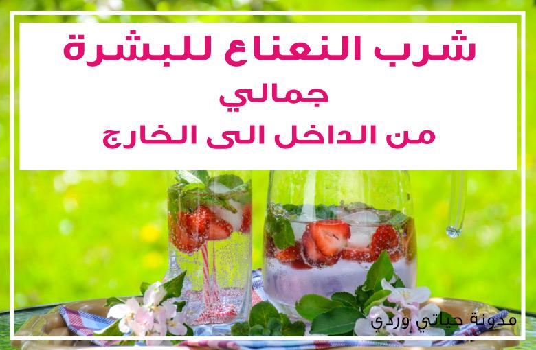 فوائد شرب النعناع للبشرة