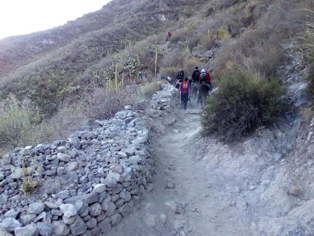 sentiero nel colca canyon