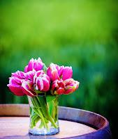 Tulip and Greenery