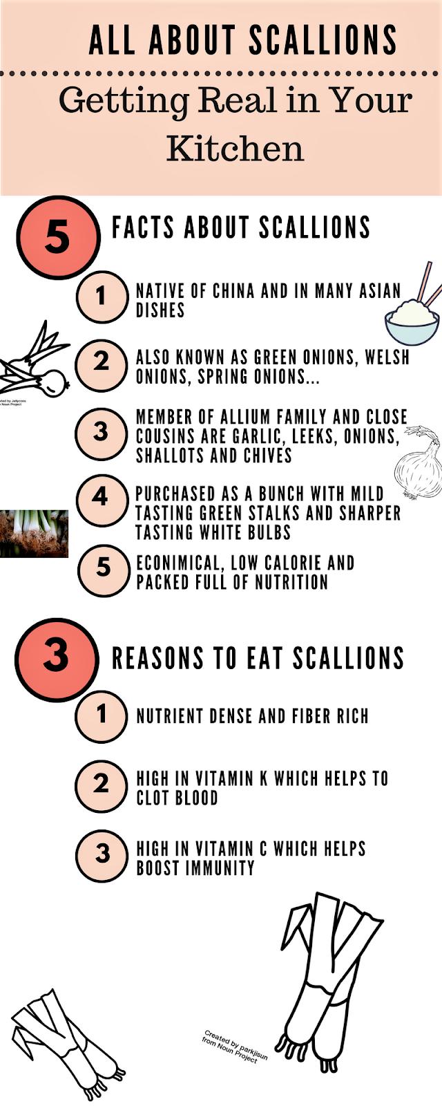 Scallion Facts Infographic