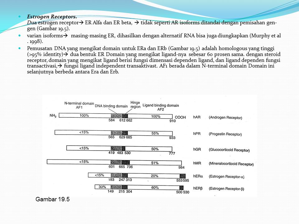 Slide Kanker Aksi Hormon Syntesis Metabolisme Estrogen Androgen Hormon Steroid Cari