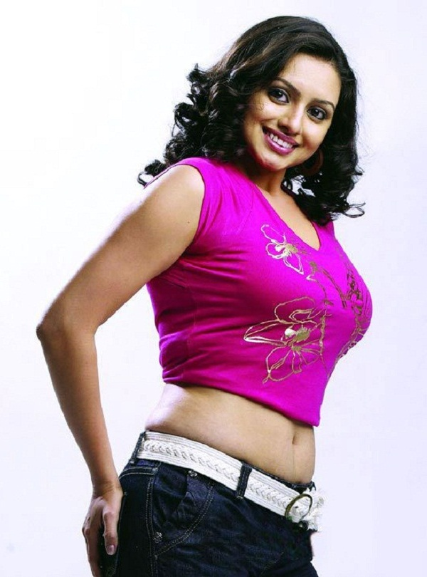 Bollywood Stars  Hema Malini South Indian Actress-8440