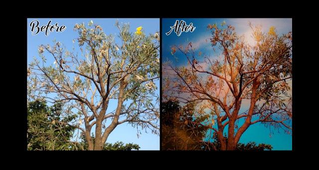 Cara Mengedit Foto Dengan Aplikasi Mix By Camera360