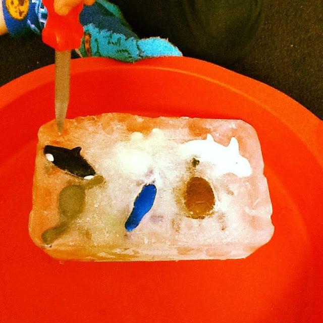 speelidee iets bevrijden uit ijs