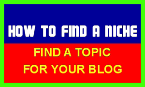 Niche Blogging for Beginners