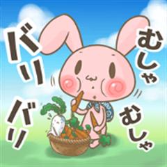 Guru Cat & Rabbit 12