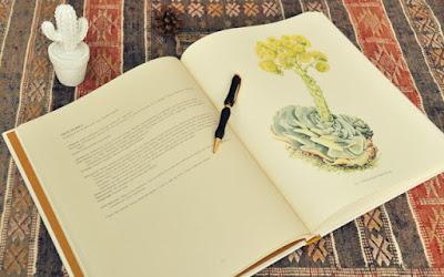 libo de botanica, dibujos de mary annie kunkel