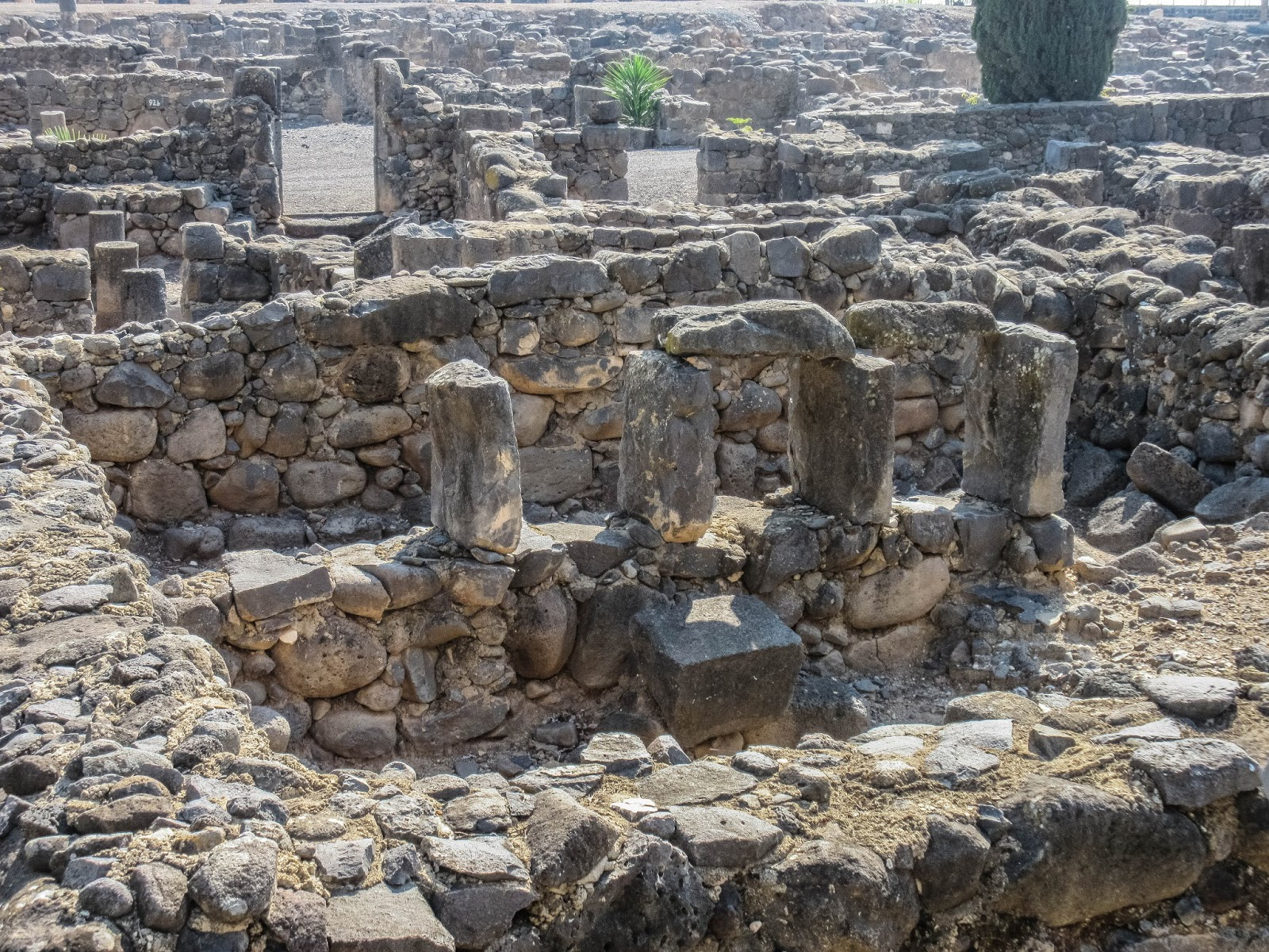 Cannundrums Capernaum Synagogue And House Of Peter