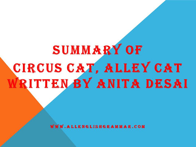 Circus-Cat-Alley-Cat-Summary-Written-By-Anita-Desai