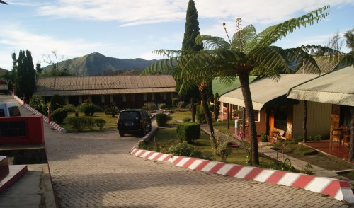 Bromo Permai hotel dekat wisata bromo
