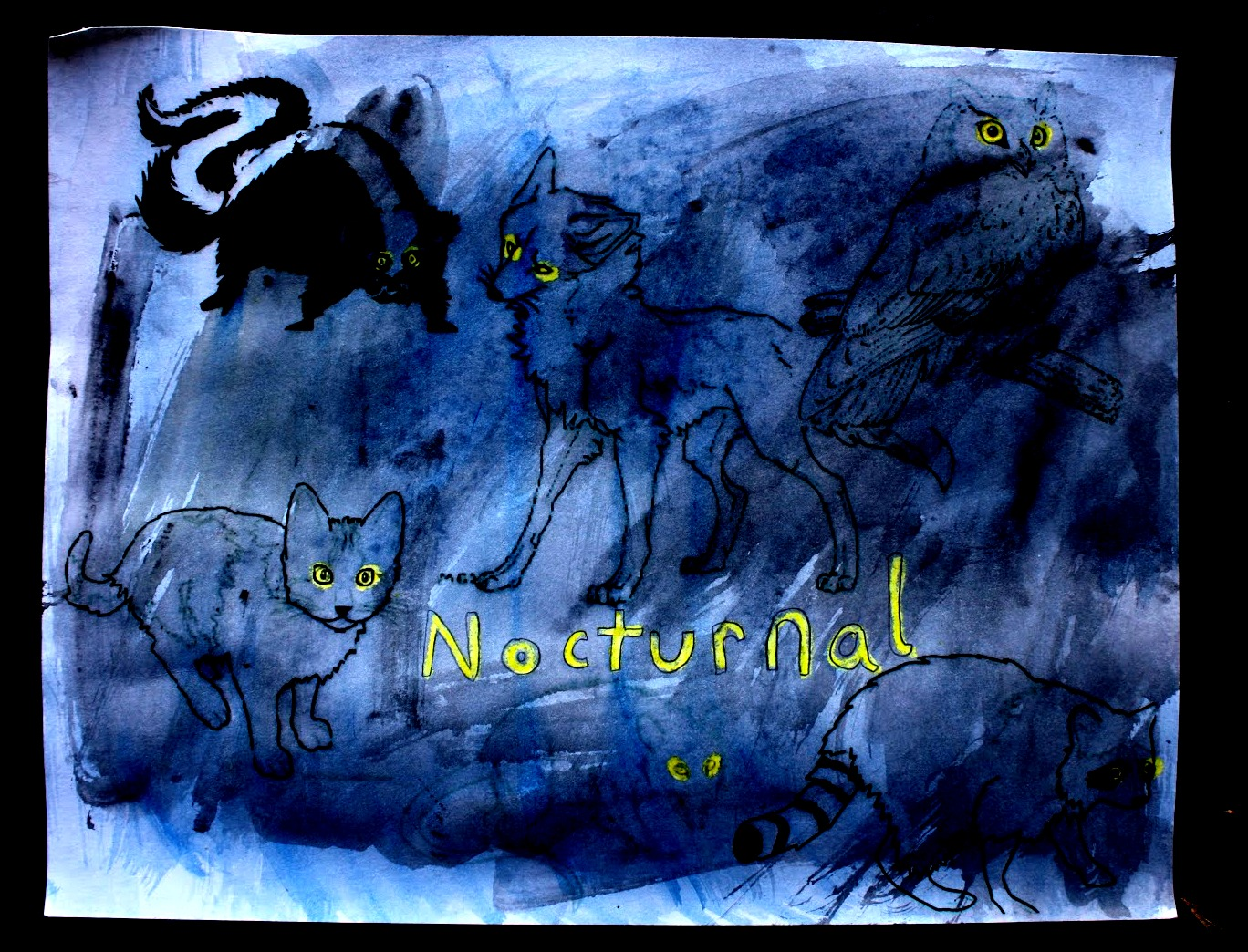 Having Fun At Home Nocturnal Animals Project Watercolor