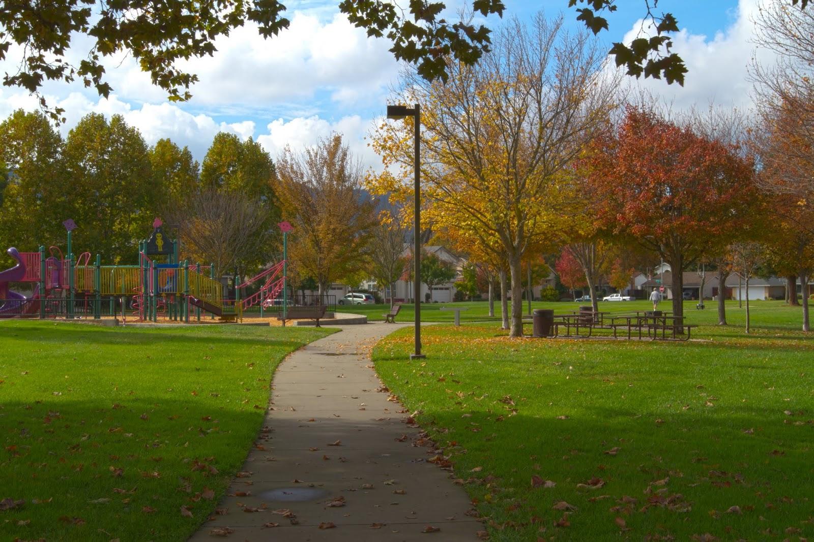 Naturetastic Blog: Fall Foliage in Pleasanton, CA