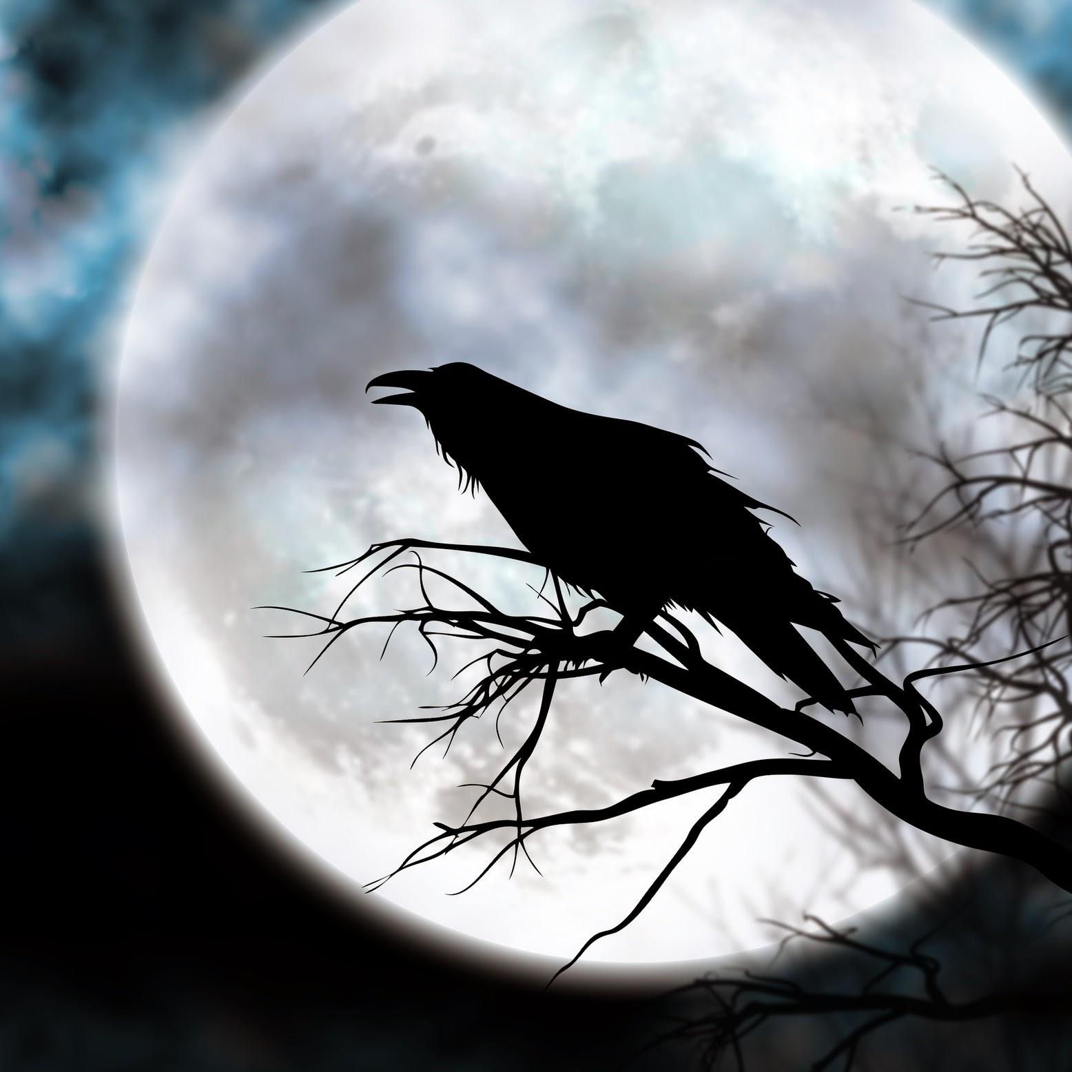 Edgar allan poe the raven analysis essay