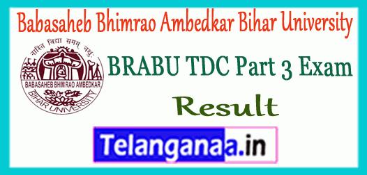 BRABU TDC Babasaheb Bhimrao Ambedkar Bihar University Part 3 BA B.Sc B.Com Result