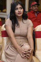 Hebah Patel in Brown Kurti and Plazzo Stuunning Pics at Santosham awards 2017 curtain raiser press meet 02.08.2017 033.JPG