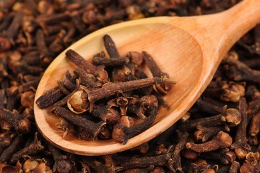 clove-for-tooth-pain