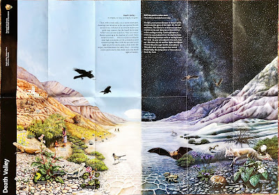Death Valley National Park Brochure and Map