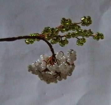 фото ветки с цветком бузины из бисера