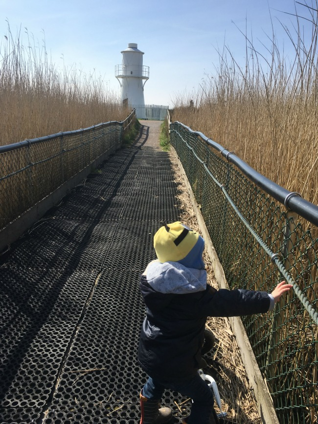 2017-year-review-Apr-bear-in-hat-and-coat-at-Newport-wetlands