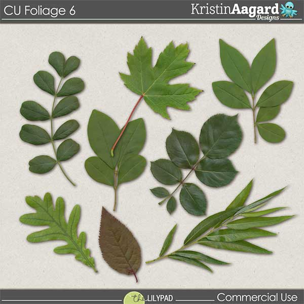 http://the-lilypad.com/store/digital-scrapbooking-cu-foliage-6.html