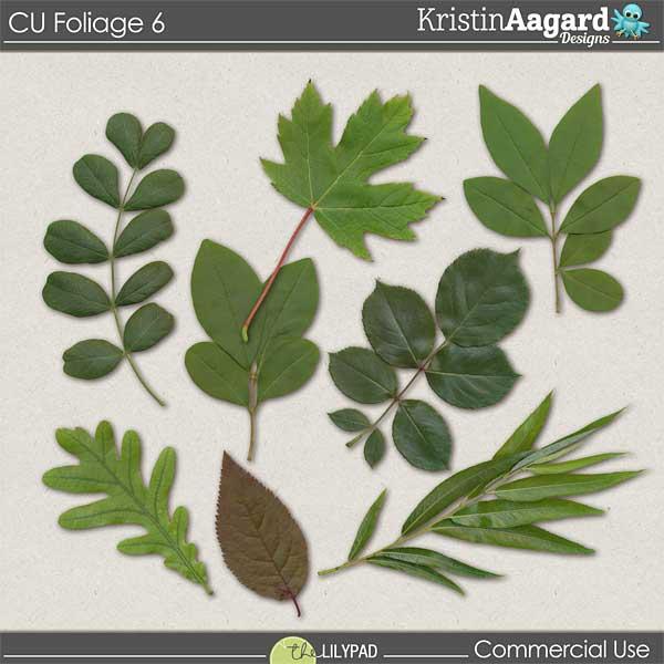 http://the-lilypad.com/store/digital-scrapbooking-cu-foliage-6.html