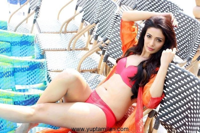 Heena Panchal Sexy Bikini Photos-Hottest Cleavage Pictures