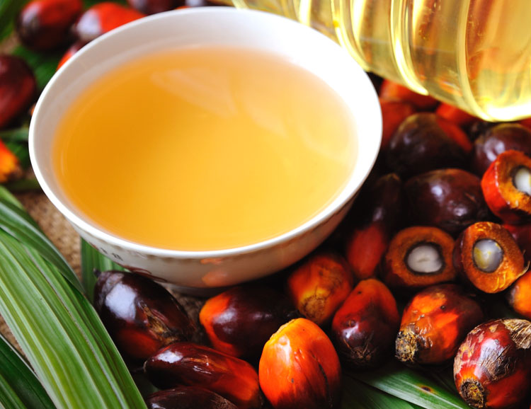 palm oil in food products