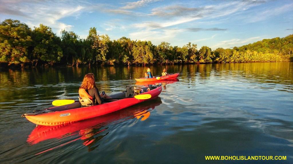 Firefly Kayaking Tour