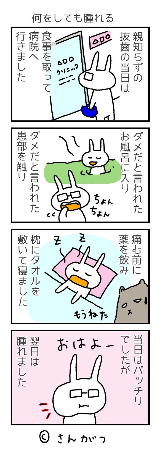 歯科矯正の漫画 9 親知らずの抜歯・・・2度目の抜歯編