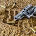 How To Get A Gun License?