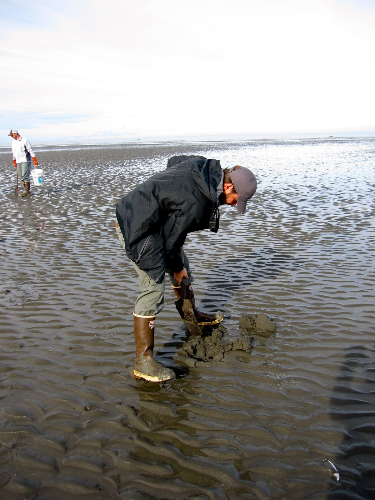Clamming in Clam Gulch, Alaska