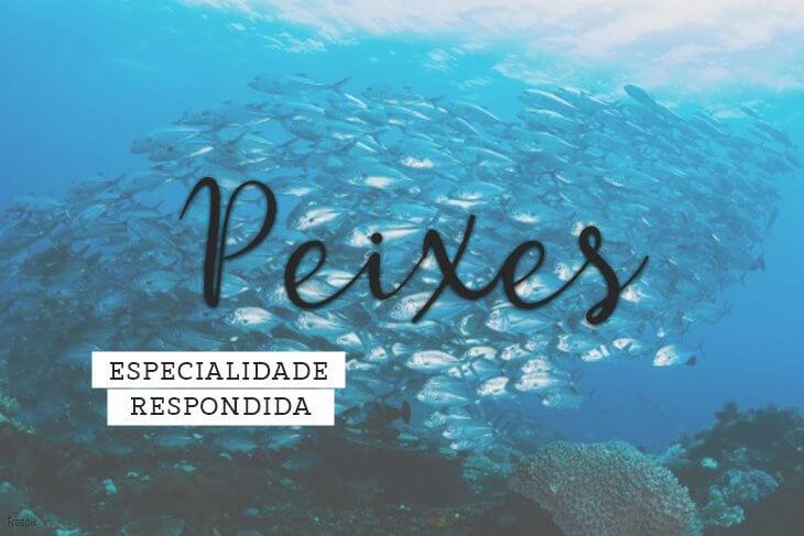 Especialidade-de-Peixes-Respondida