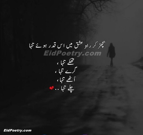 Bichar ke rah-e-ishq mein is kadar howe tanha