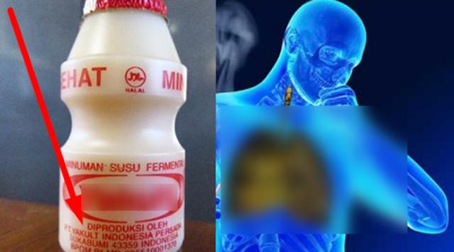 Terbongkar Fakta Mengejutkan! Apakah Anda Sering Minum Susu Fermentasi Ini? Kalo Iya Berarti Anda Perlu Tahu
