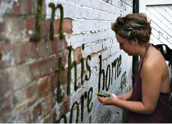 graffitis con vida, grafiti con musgo, manualidad mágica, pintar con musgo