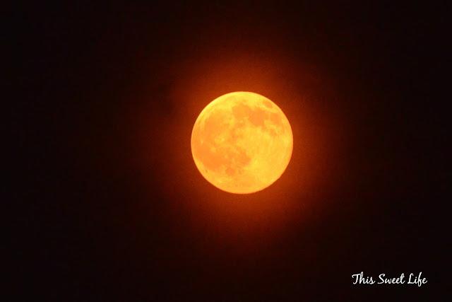 red moon blue sun poem - photo #9