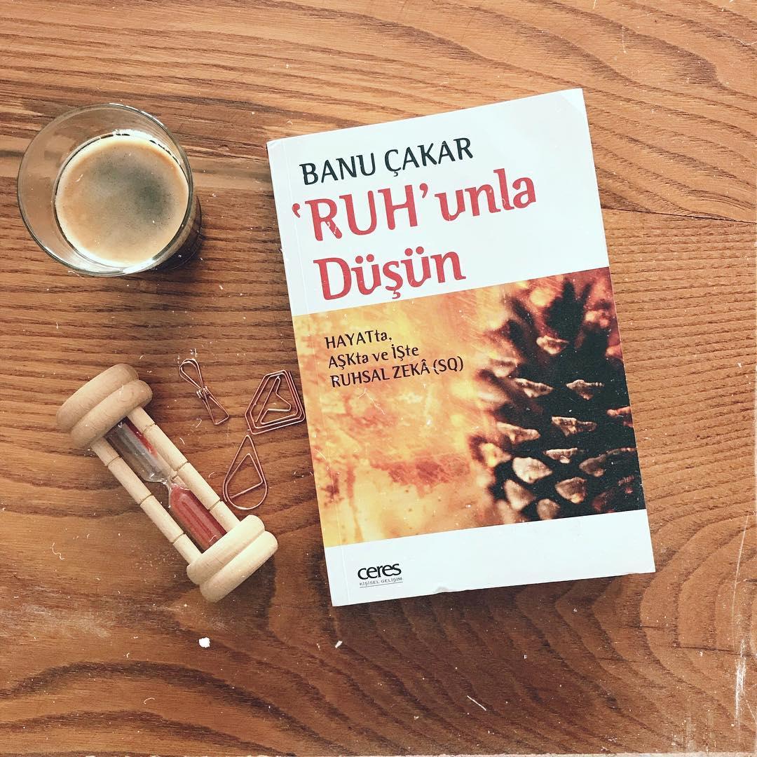 'Ruh'unla Dusun - Hayatta, Askta ve Iste Ruhsal Zeka (SQ) (Kitap)