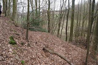 Eine gerade Fläche am Hang, die mit Laub bedeckt ist